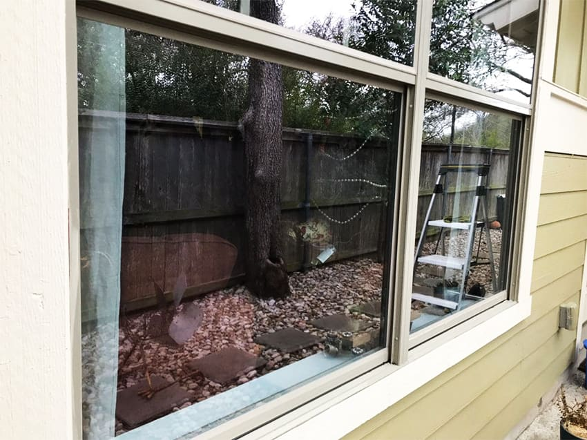 window cleaning leander tx after the windows were clean they sparkle and were spotless!